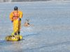 Stranded deer rescued from Rice Lake