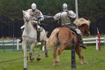 CHIVALRY AND ACTION IN BRACEBRIDGE