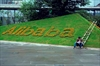 Are you Alibaba literate? 5 things to know about the company-Image4