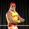 Hulk Hogan's 'really bad choices' -Image1