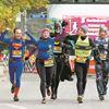 Toronto Waterfront Marathon 2015