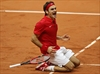Roger Federer's Switzerland wins Davis Cup final-Image1