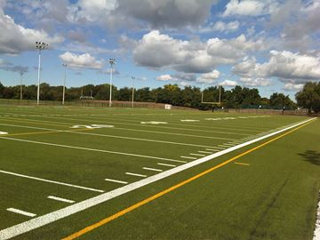 Queen's artificial turf