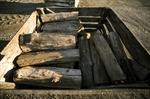 Corduroy wood