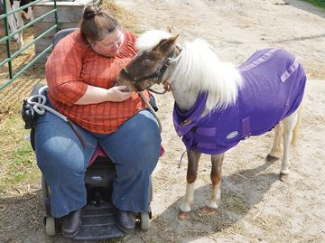 Barn Buddies program offers relief in Tiny Township