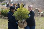 Markham Plants 10,000 Trees