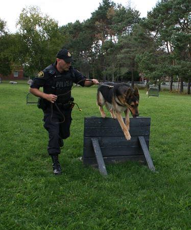 OPP Canine Unit celebrates 50 years