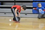 Introduction to Baseball Clinics