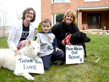 Welland boy pays it forward to Niagara Dog Rescue