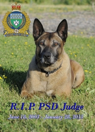 Police dog Judge