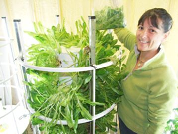 Volunteers needed for tower garden project