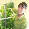 Volunteers needed for tower garden project