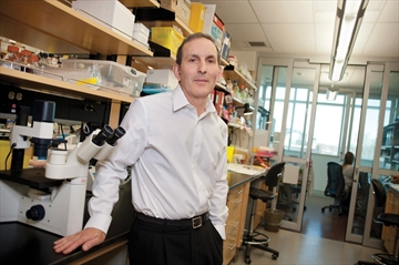 Study probes bariatric surgery-colon cancer link-Image1