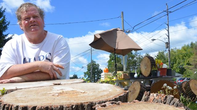 Mature trees chopped on Parkhill Road