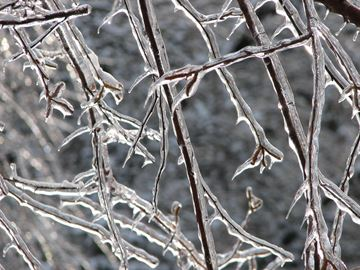 Freezing rain likely for Tuesday