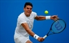 Raonic cruises into Queen's Club semifinal-Image1