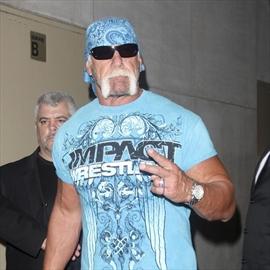 Hulk Hogan defended by pals -Image1