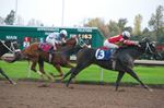 Fort Erie Race Track