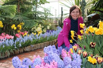 Karen Schinners in the City of Kingston greenhouse