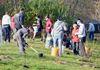 Keswick Planting Party