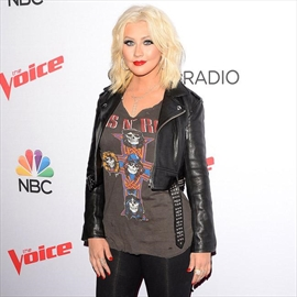 Christina Aguilera thinks Hayden Panettiere is 'a Pit bull'-Image1