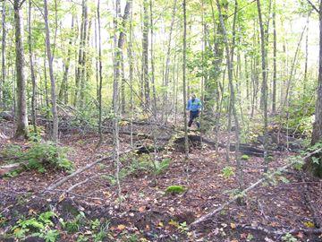 Careful logging