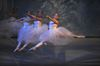 IN PICTURES: The Nutcracker at Cardinal Carter