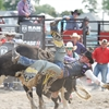 Orono Ram Rodeo Gallops in the Orono Fairgrounds
