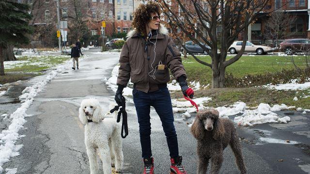 Pickering Walks Dogs