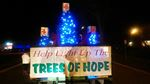 Trees of Hope lights up in Dunnville
