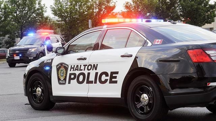 Hamilton Teen Charged In Oakville Thefts Thespec Com