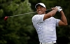 Woods pulls out of US Ryder Cup consideration-Image1