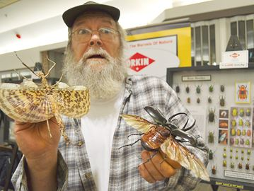 Bug-eyed over Midland insect exhibit