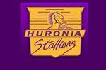 Huronia Stallions