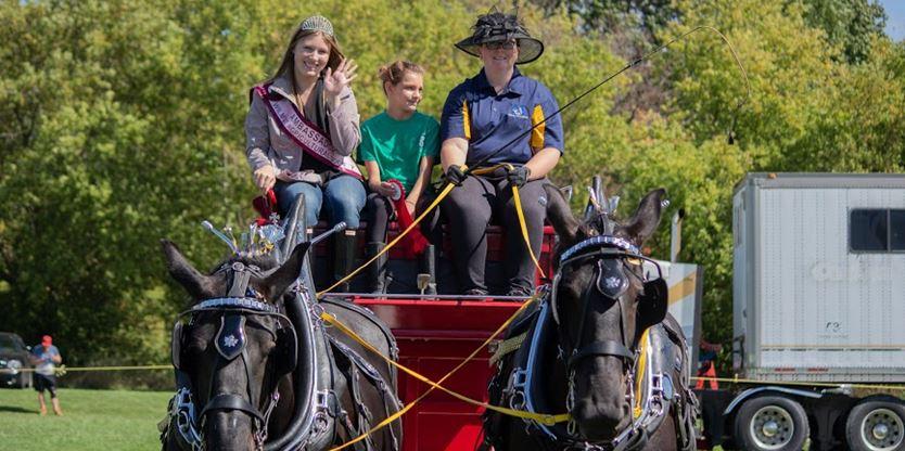 Fall Fair Ambassador Erin Brenneman excited for chance to represent Wilmot community