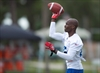Alouettes sign receiver Chad Johnson-Image1