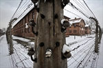 Dwindling group of survivors to mark Auschwitz 70 years on-Image1