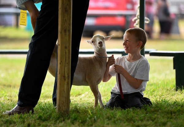 Sean McCarthy, 6, is all smiles as a judge examines his baby goat, Tulip, during a competition.