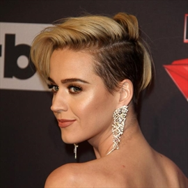 Katy Perry pays tribute to 'Katy Cat' killed in car crash-Image1