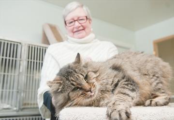 New Scugog Animal Shelter Update