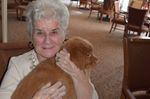 Nine-week old puppies visit Stittsville Seniors Community