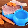 Benefits of feeding your dog raw food