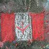Durham Region celebrates Canada Day 2015