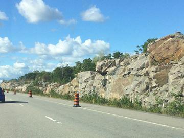 Wildlife fencing along Highway 400