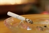 Nicotine metabolism dictates best way to quit -Image1