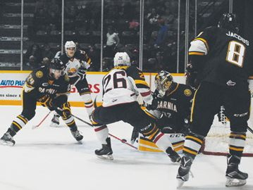 Sting shutout Barrie Colts in OHL home opener