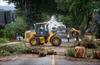 Clean-up begins after southwest B.C. windstorm-Image1