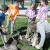 Terry Fox tree planting