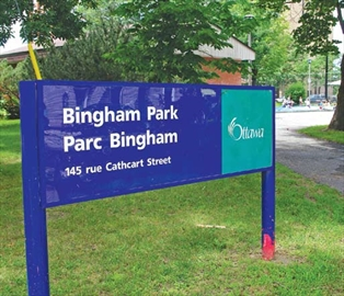 Gardeners wanted again for Bingham Park; Bingham Park residents look t– Image 1