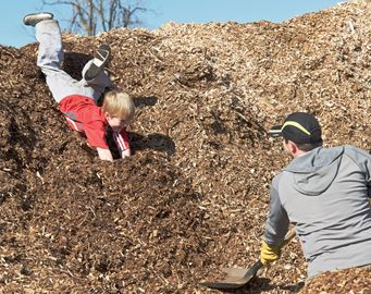 Collecting wood chips